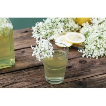 In estate, un succo di sambuco (sciroppo diluito con acqua) è la bibita più rinfrescante che esista